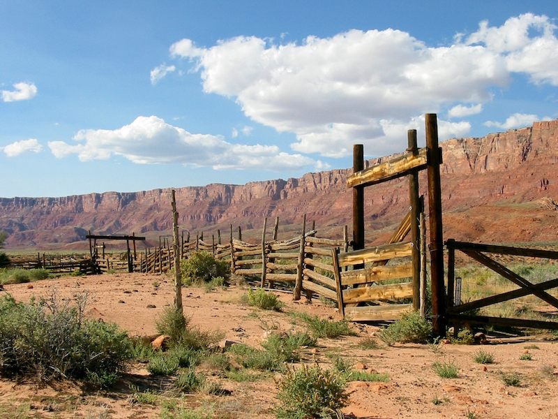 11 14 Corral Grand Canyon Trust