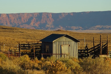North Rim Ranches: Sustainable Ranching and Science by the Grand Canyon