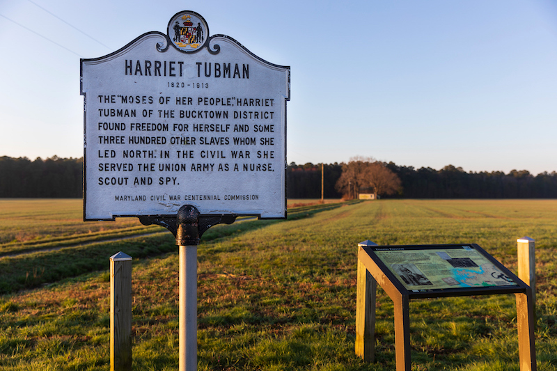 2 22 21 Harriet Tubman Rural Legacy Area MD c EcoPhotography201904053