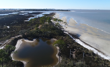 Preserving the Gulf Coast's Bountiful Resources