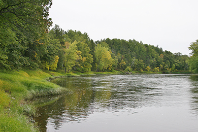 Forestland Protected Near Camp Ripley in Minnesota