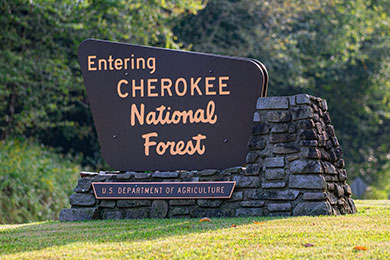 Cherokee National Forest. Photo courtesy of VW.