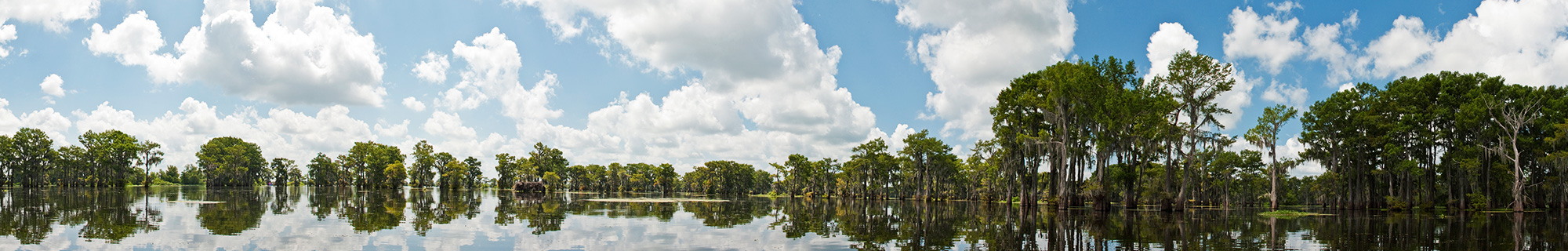 The Conservation Fund Louisiana
