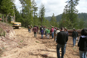 Community members tour logging operations at the Fund's Big River Forest. Photo by The Conservation Fund.