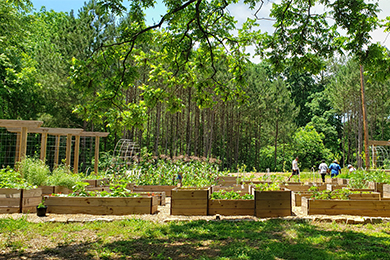 Urban Food Forest at Browns Mill