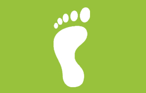 Calculate Your Carbon Footprint