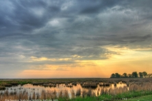 wallpaper Blackwater NWR wetlands Nikographer 1600 600x450