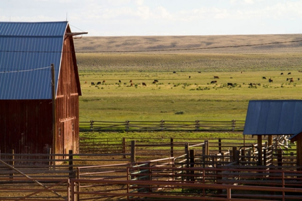 WY Budd Ranches barn Mark Gocke 2010 04 645x430