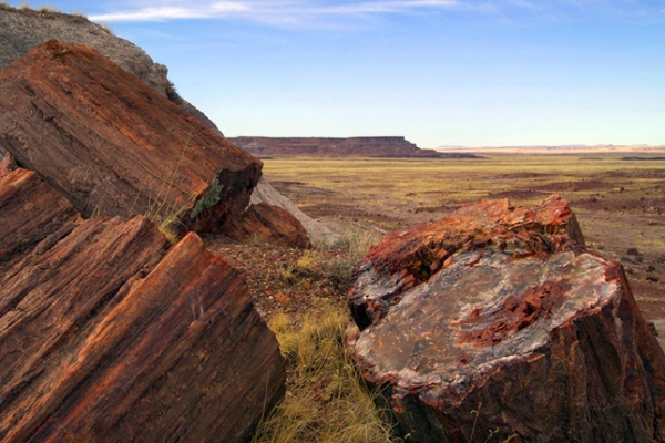 petrified forest arizona expansion nps 645x430
