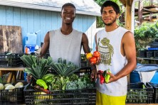 Gardening in the Community