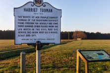 edited2Harriet Tubman Rural Legacy Area MD  c  EcoPhotography201904053