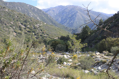 Mt Baldy Wilderness Preserve Dedicated in California