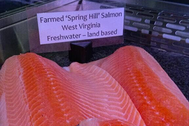 Freshwater Institute's salmon for sale.  Photo courtesy of @DCfishwife.