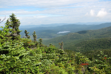 24,000 Acres of Working Forests Conserved in New Hampshire