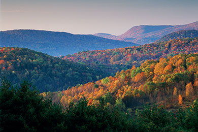 The Fund Buys 23,000 Acres of Forestland In NY, VT & MA