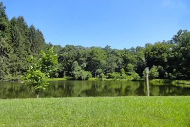 Nature Preserve Land Added To Michaux State Forest