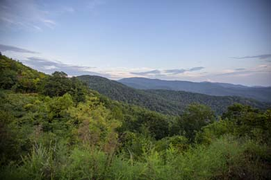 Partnership with VW to Increase Cherokee National Forest