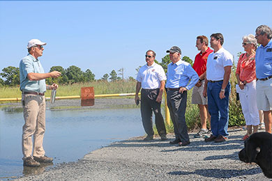 Marsh Resilience Tour at Blackwater Wildlife Refuge