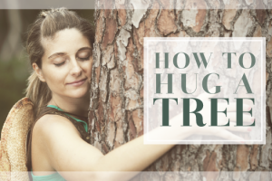 How To Hug A Tree