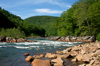The Cheat River and Canyon. Photo by Reggie Hall.