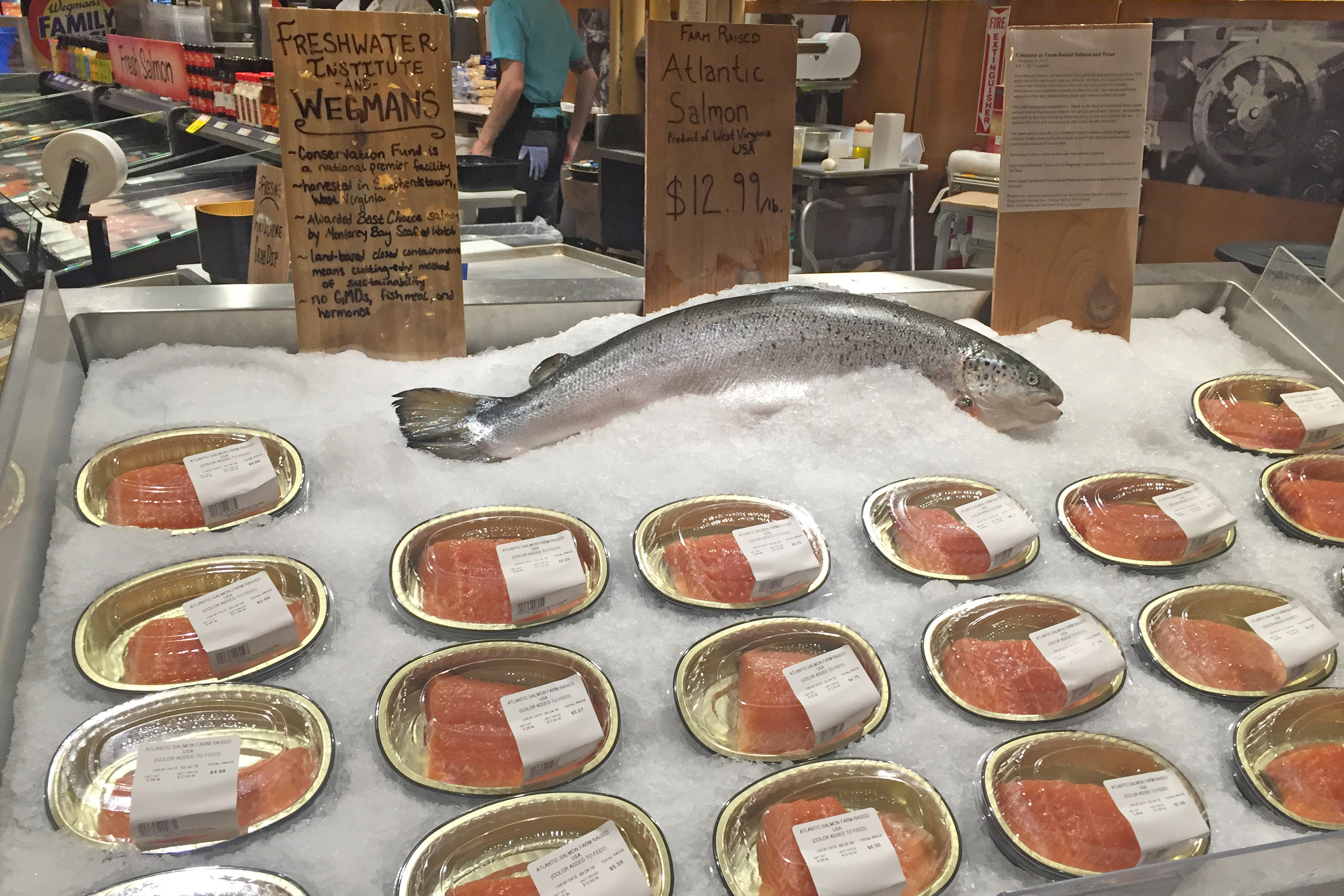 Freshwater Institute Partnership with Wegmans Food Markets