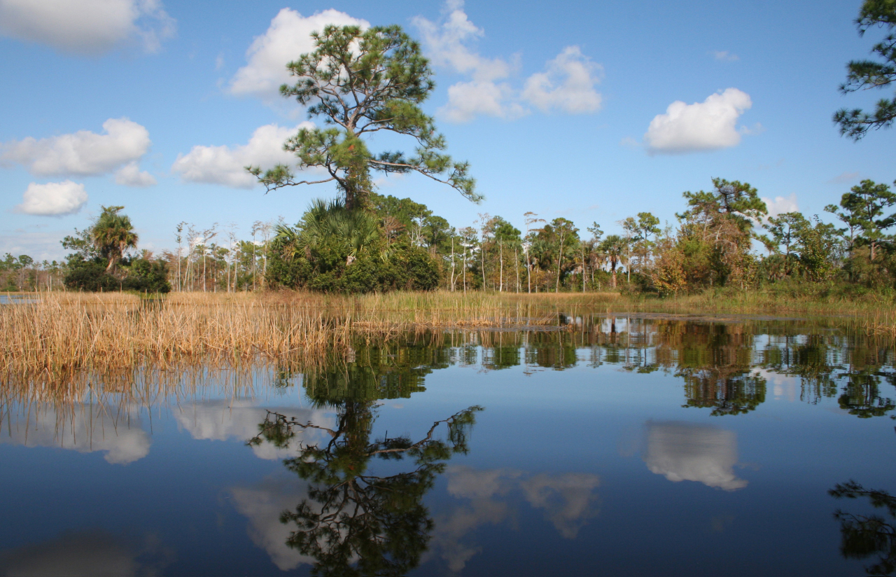 Strategic Conservation for the Loxahatchee River Watershed