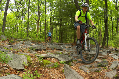 Mountain bikers enjoying a ride through Michaux State Forest.  Photo by Jonas Nockert/Flickr