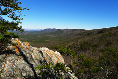 View from Pinhoti Trail. Photo by McDowell Crook/Flickr.