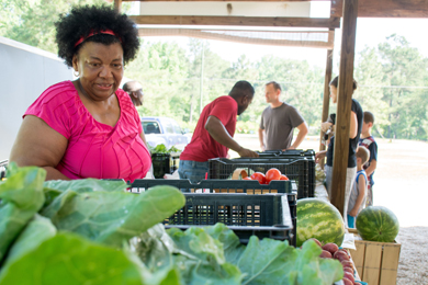 On Track with Healthy Foods Grant Program
