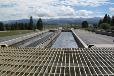 USFWS Hatchery Modernization Project