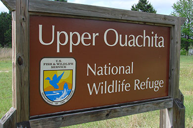 Upper Ouachita National Wildlife Refuge