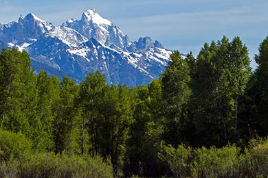 Jackson Hole Land Trust, Wyoming