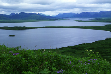 Izembek National Wildlife Refuge