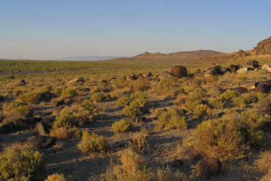 Western Nevada landscape. Photo by Ken Lund/Flickr