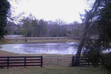 Ravenswood Farm propery. Photo courtesy City of Brentwood