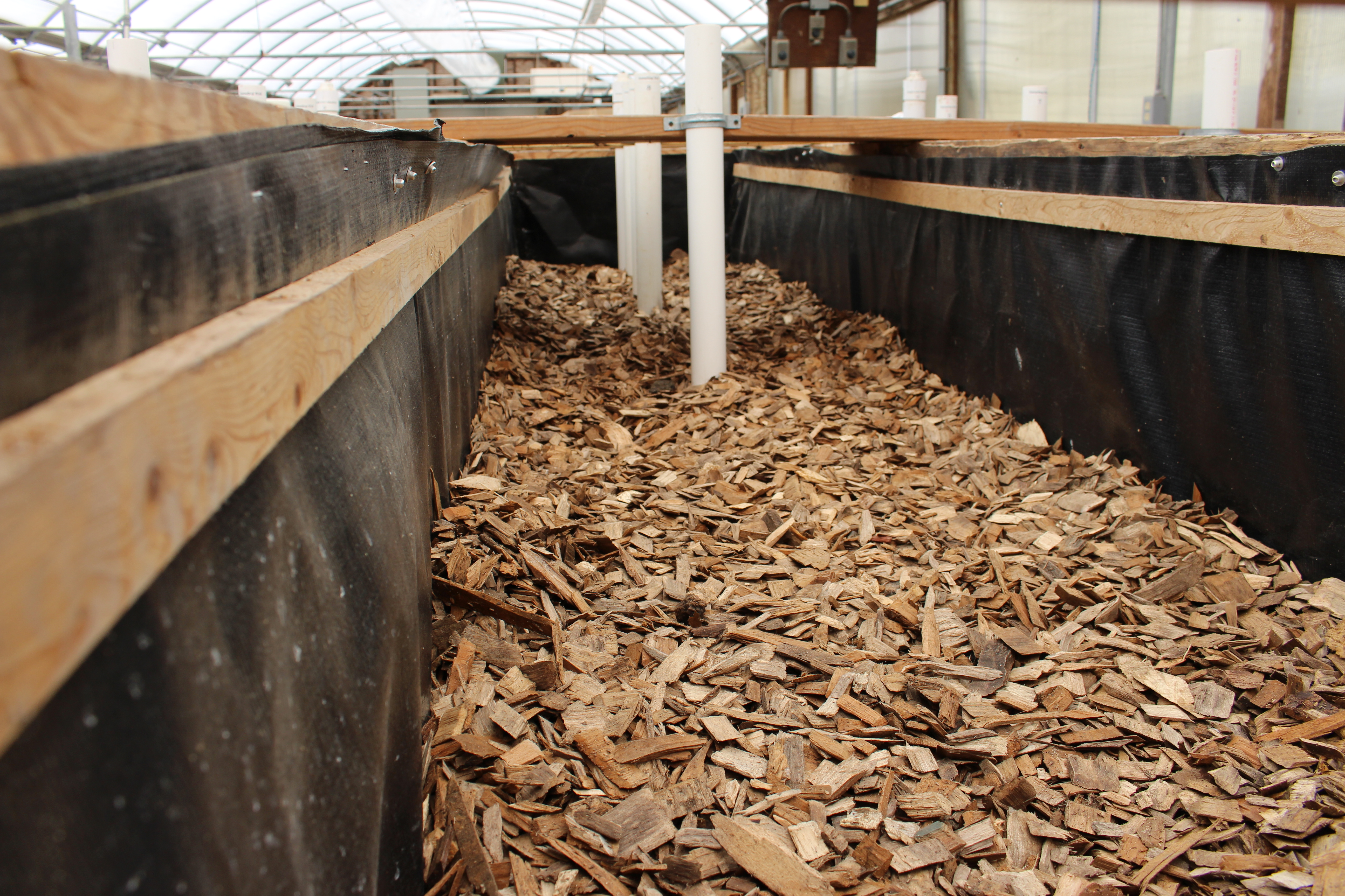 An inside view, one of four experimental denitrification woodchip bioreactors located at the Freshwater Institute.