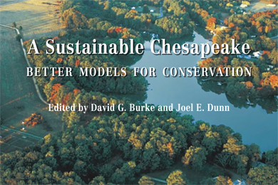 Chesapeake-Bay-Better-Models-cover-390x260