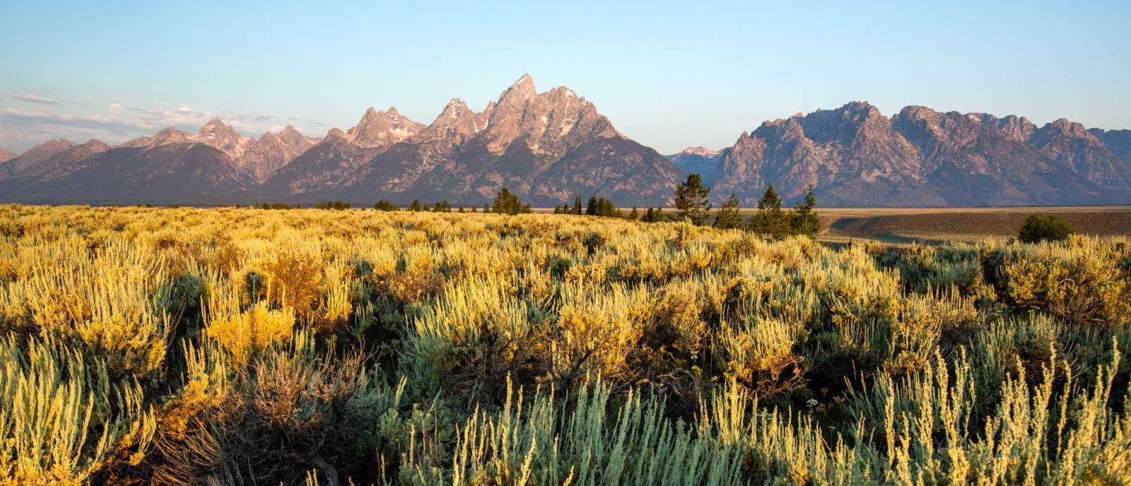 U.S. Senate Overwhelmingly Passes Historic Conservation Legislation